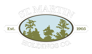 St Martin Holdings